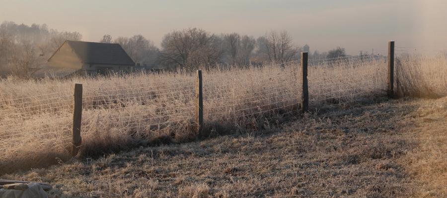 Mroźna zima w pasiece