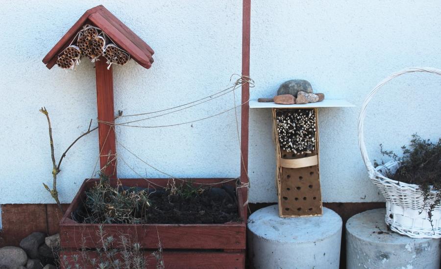 Domek dla murarki ogrodowej